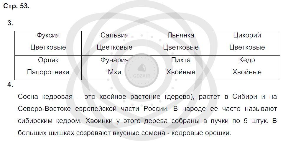 Окружающий мир 3 класс Плешаков А. А. Страницы: 53