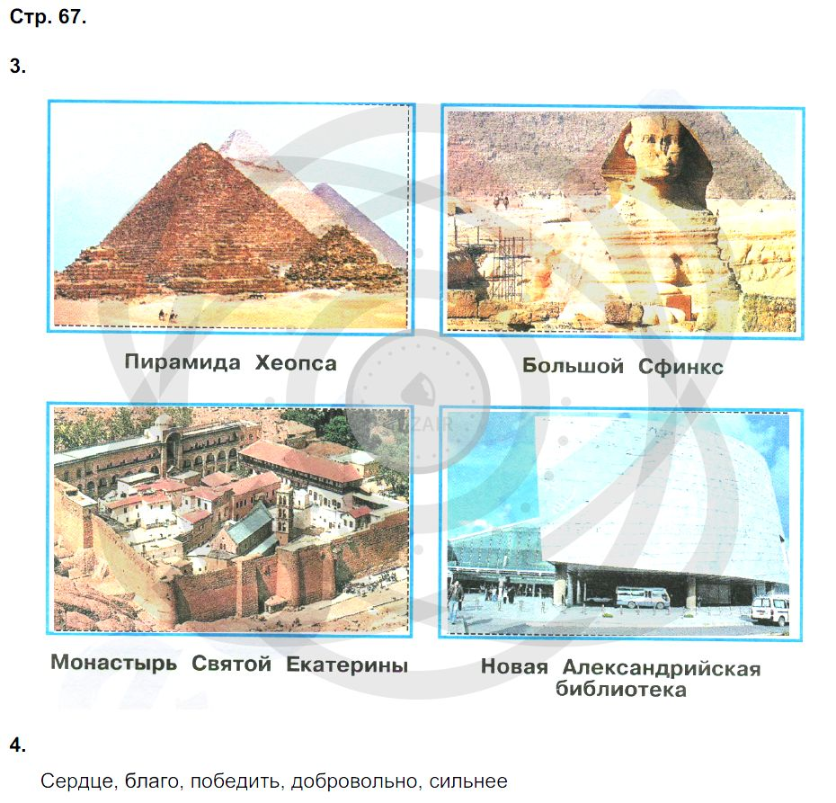Окружающий мир 3 класс Плешаков А. А. Страницы: 67